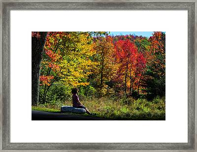 Autumn Leaves In The Catskill Mountains Framed Print