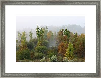 Framed Print featuring the photograph Autumn Morning Fog by Tatiana Travelways
