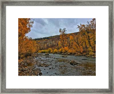Framed Print featuring the photograph Autumn On The Yampa River by Dan Miller