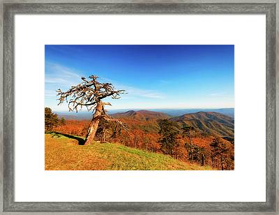Autumn Scenic Drive Along The Blue Ridge Parkway In North Caroli Framed Print