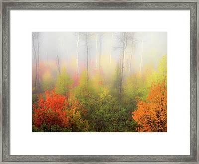 Autumn Stillness 2 Framed Print by Leland D Howard