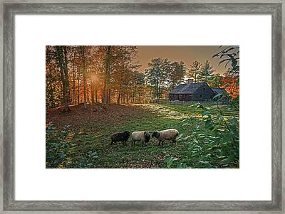 Autumn Sunset At The Old Farm Framed Print