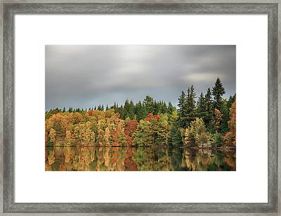 Framed Print featuring the photograph Autumn Tree Reflections by Grant Glendinning