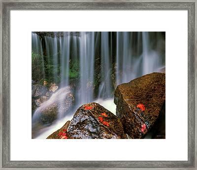 Autumn Waterfall Framed Print by Leland D Howard