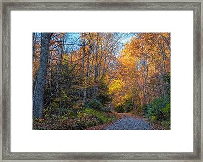 Back Road Beauty Framed Print