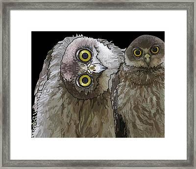 Barking Owls 2 Framed Print