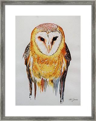 Barn Owl Drip Framed Print