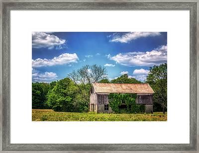 Barn With Ivy Framed Print