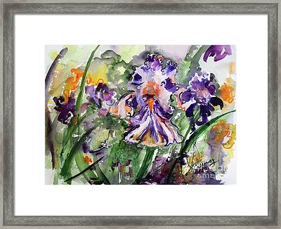 Framed Print featuring the painting Bearded Iris Splendor Watercolor by Ginette Callaway