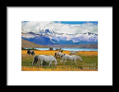 Andes Framed Prints