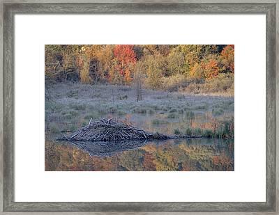 Beavor Pond, Autumn, Gatineau Park Framed Print