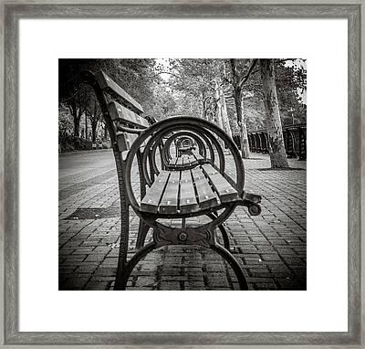 Bench Circles Framed Print