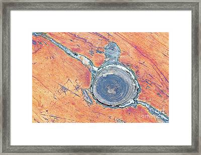 Benched Framed Print by Steven Dillon