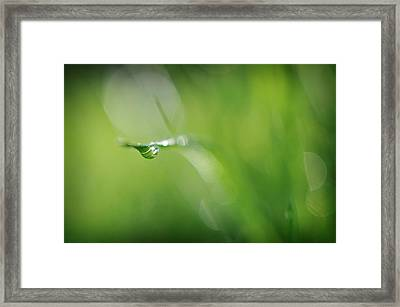 Framed Print featuring the photograph Beneath by Michelle Wermuth