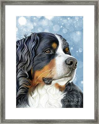 Framed Print featuring the mixed media Bernese Arctic Blue by Donna Mulley