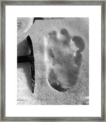 Big Foot Framed Print by Topical Press Agency