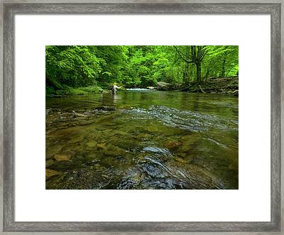 Big Ones Framed Print