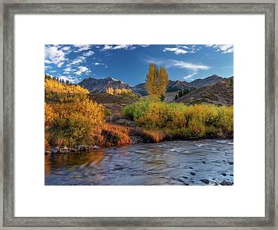 Big Wood River Color Framed Print by Leland D Howard