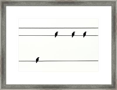 Birds On Power Lines Framed Print