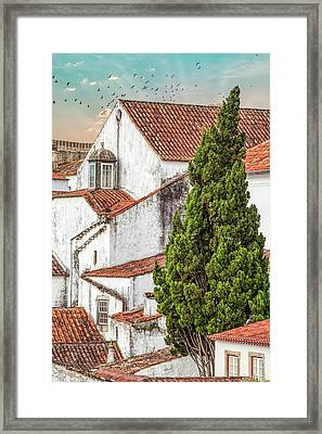Birds Over Obidos Framed Print