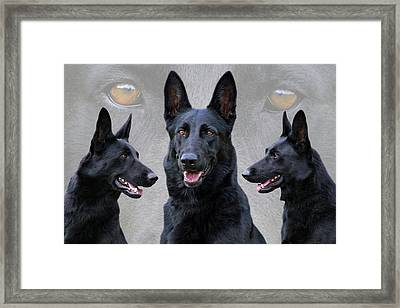 Black German Shepherd Dog Collage Framed Print