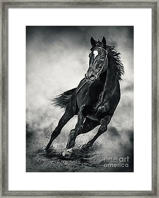Framed Print featuring the photograph Black Horse Running Wild Black And White by Dimitar Hristov