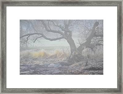 Framed Print featuring the photograph Blanket Of Fog by Randi Grace Nilsberg