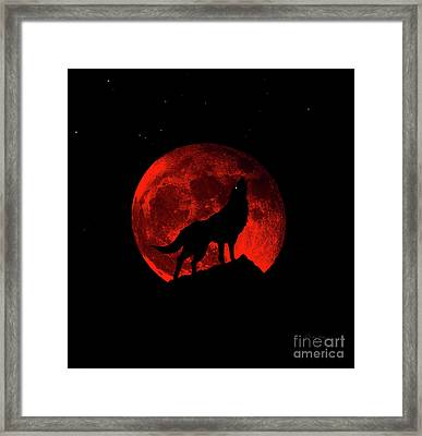 Blood Red Wolf Supermoon Eclipse 873l Framed Print