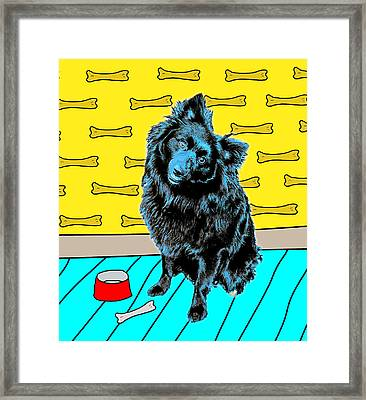 Framed Print featuring the photograph Blue Dog by Lou Novick