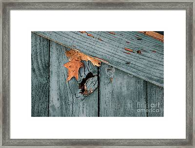 Blue Fence Framed Print