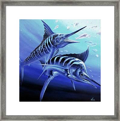 Blue Marlins Framed Print