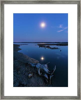 Framed Print featuring the photograph Blue Moonlight by Davor Zerjav