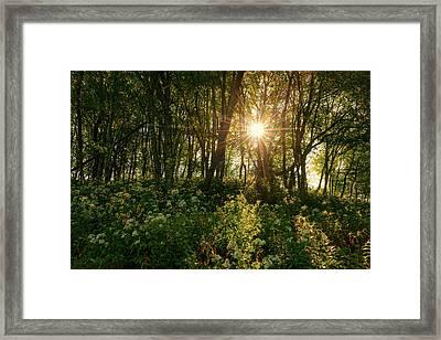 Blue Ridge Parkway - Last Of Summers Light, North Carolina Framed Print