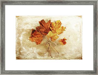 Framed Print featuring the photograph Bouquet Of Memories by Randi Grace Nilsberg