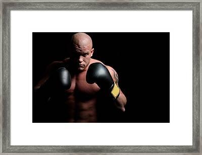 Boxer Framed Print by Vuk8691
