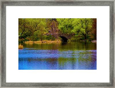 Bridge In Central Park Framed Print
