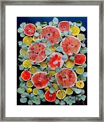 Brighter Days Citrus Framed Print