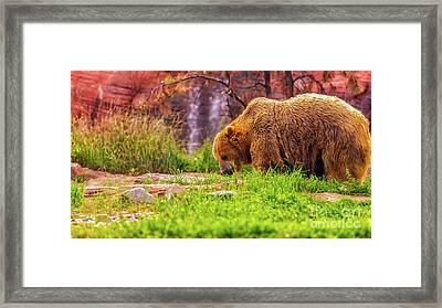 Brisk Walk Framed Print
