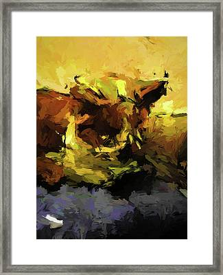 Brown Cat On The Cushion Framed Print