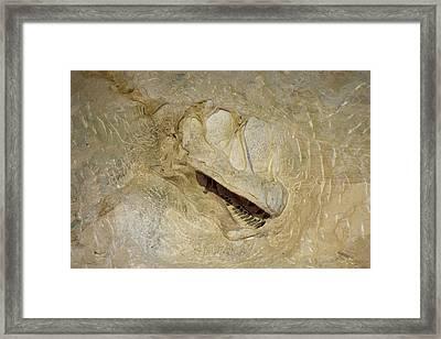Buried Alive Framed Print