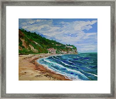 Burnout Beach, Redondo Beach California Framed Print