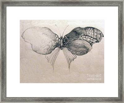 Framed Print featuring the drawing Butterfly For Jeffrey by Rosanne Licciardi