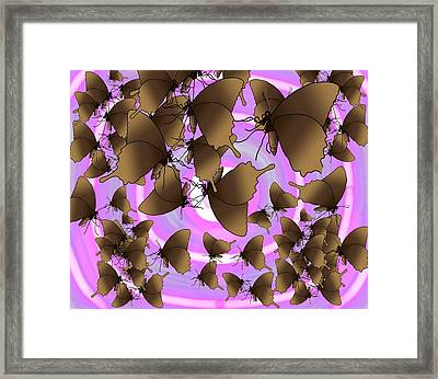 Butterfly Patterns 10 Framed Print