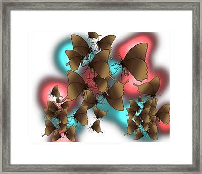 Butterfly Patterns 11 Framed Print