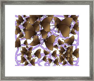 Butterfly Patterns 12 Framed Print