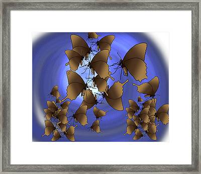 Butterfly Patterns 13 Framed Print