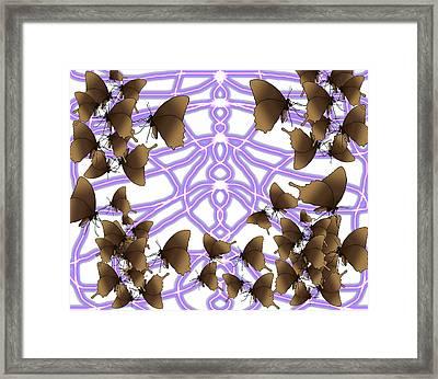 Butterfly Patterns 14 Framed Print