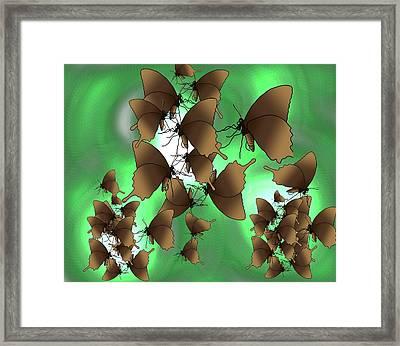 Butterfly Patterns 15 Framed Print