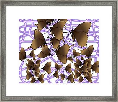 Butterfly Patterns 16 Framed Print