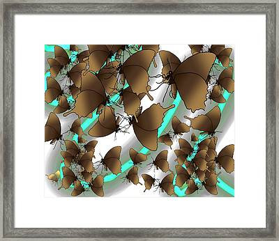 Butterfly Patterns 2 Framed Print